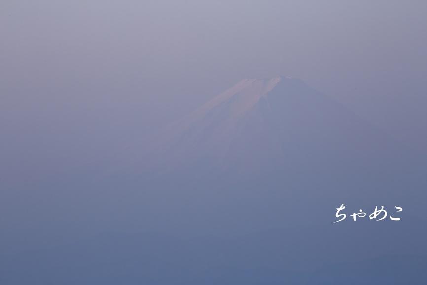 1F5A2817.JPG
